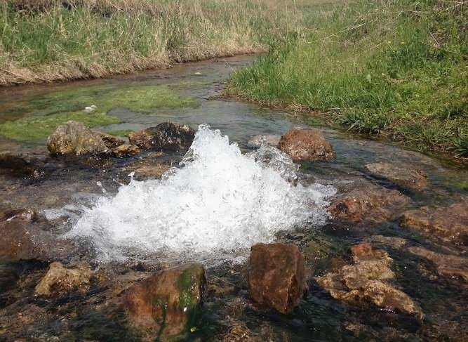Источник артезианской воды