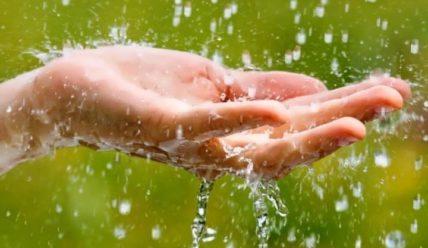Полезна или вредна дождевая вода, можно ли ее пить
