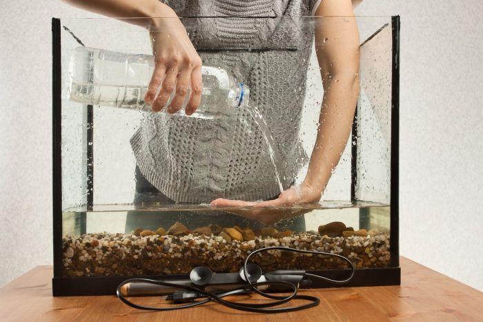 замена воды в домашнем аквариуме